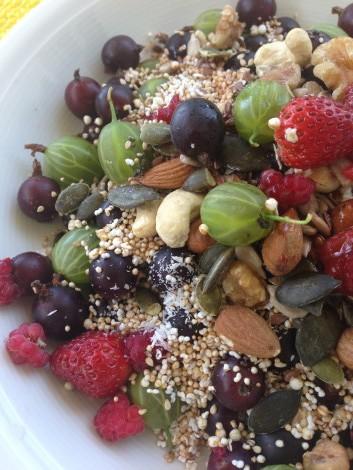gesunde Beeren