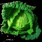 Kohl - Gemüse grün